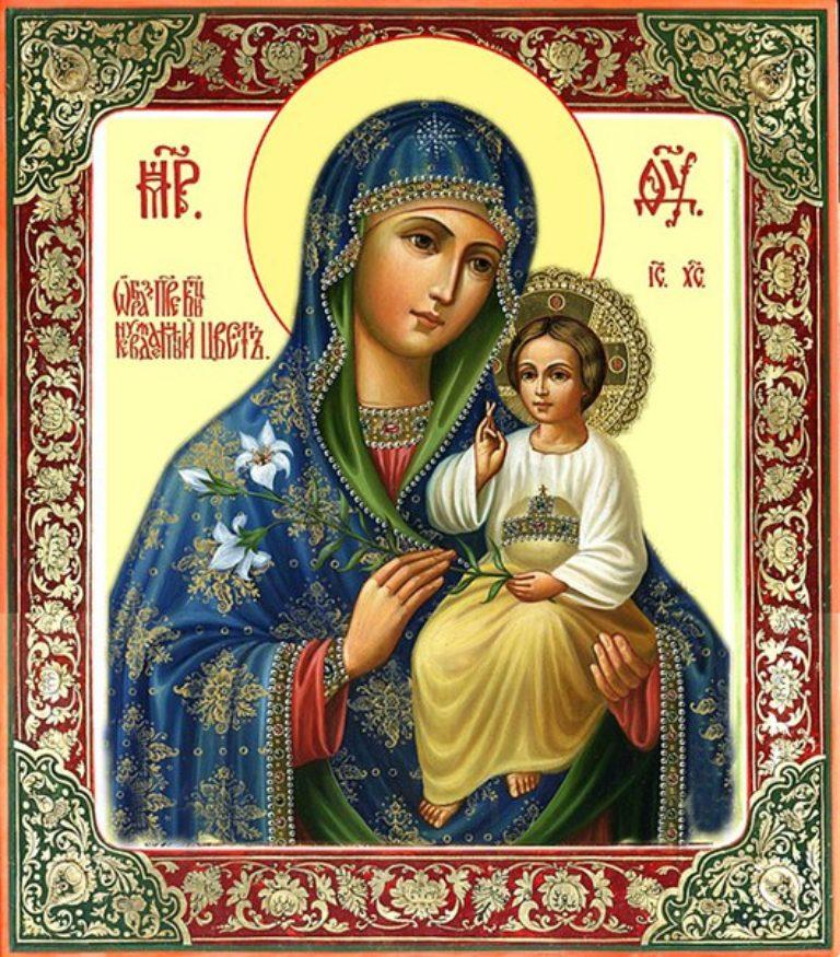 Икона Богородицы «Неувядаемый Цвет»