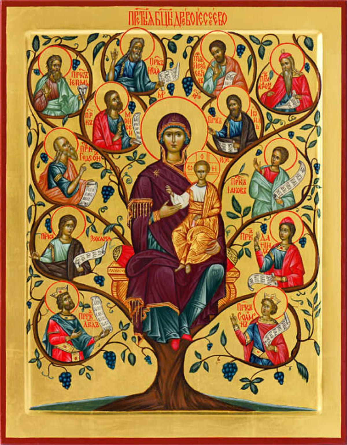 Неделя святых отец. Родословие Спасителя